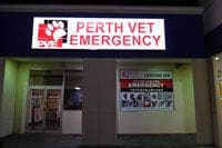 After Hours Veterinarians In Perth